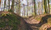 Randonnée A pied VILLERS-COTTERETS - le GR11A  dans la Forêt de Retz  - Photo 55