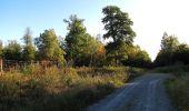 Trail Walk DAMPLEUX - en forêt de Retz_80_sur la Route Tortue et la Route Droite - Photo 48