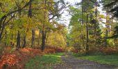 Randonnée Marche SAINT-JEAN-AUX-BOIS - en forêt de Compiègne_19_le Puits d'Antin_les Mares St-Louis_La Muette - Photo 74