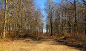 Trail Walk PIERREFONDS - en forêt de Compiègne_24_Tournantes sur le Voliard et sur la Fortelle_chaussée Brunehaut - Photo 73