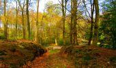 Randonnée A pied VILLERS-COTTERETS - le GR11A  dans la Forêt de Retz  - Photo 86