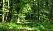 Randonnée Marche HARAMONT - en forêt de Retz_79_08_2019_vers Taillefontaine et Retheuil par les lisières - Photo 59