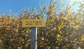 Randonnée Marche SAINT-OURS - 2019-09-12 - Puy des Gouttes - Puy Chopine -Puy Coquille - Puy de Jumes - Photo 7