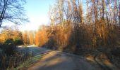 Trail Walk SAINT-JEAN-AUX-BOIS - en forêt de Compiègne_33_12_2019_les Tournantes de l'étang Saint-Jean et des Prés Saint-Jean - Photo 30