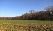 Trail Walk RETHEUIL - en forêt de Retz_76_dans les forêts de Retz et de Compiègne - Photo 66