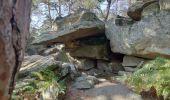 Randonnée Marche FONTAINEBLEAU - Forêt de Fontainebleau tour de Denecourt 21-09-19.ori - Photo 2