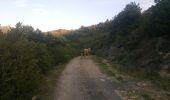 Trail Ropes DUILHAC-SOUS-PEYREPERTUSE - Cathare 4 Duilhac sous P.  Bugarach - Photo 7