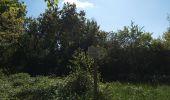 Randonnée Marche SENTHEIM - Chemin de croix - Photo 4