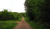 Randonnée Marche COYOLLES - en forêt de Retz_78_les rayons du Rond Capitaine - Photo 146