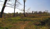 Randonnée Marche LONGPONT - en forêt de Retz_77_Longpont_Puiseux en Retz_AR - Photo 65
