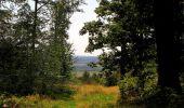 Randonnée Marche HARAMONT - en forêt de Retz_79_08_2019_vers Taillefontaine et Retheuil par les lisières - Photo 120