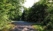 Trail Walk DAMPLEUX - en forêt de Retz_80_sur la Route Tortue et la Route Droite - Photo 228