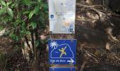 Randonnée Marche LES ANSES-D'ARLET - cap salomon - Photo 3