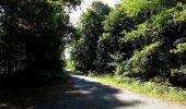 Trail Walk DAMPLEUX - en forêt de Retz_80_sur la Route Tortue et la Route Droite - Photo 237