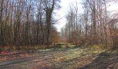 Trail Walk SAINT-JEAN-AUX-BOIS - en forêt de Compiègne_33_12_2019_les Tournantes de l'étang Saint-Jean et des Prés Saint-Jean - Photo 11