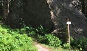 Randonnée Marche SAINT-ETIENNE-LES-REMIREMONT - Le Saint Mont boucle 13,9kms - Photo 7