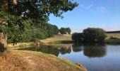 Randonnée Trail NEANT-SUR-YVEL - Autour des étangs à partir du gîte de tante Phonsine - Photo 3