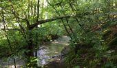 Randonnée Marche Havelange - Bois, Rivière et champs - Photo 16