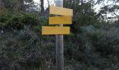 Randonnée Marche GRANE - Bois de Lagier- Loriol- Petit tour du Serre Avolas - Photo 1