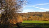 Trail On foot VIEUX-MOULIN - en forêt de Compiègne_23_la Grotte des Ramoneurs_le Mont Berny - Photo 53