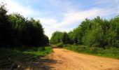 Randonnée Marche COYOLLES - en forêt de Retz_78_les rayons du Rond Capitaine - Photo 45