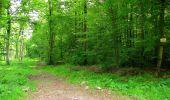Randonnée Marche COYOLLES - en forêt de Retz_78_les rayons du Rond Capitaine - Photo 30
