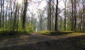 Randonnée Marche LONGPONT - en forêt de Retz_77_Longpont_Puiseux en Retz_AR - Photo 141