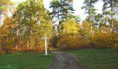 Randonnée Marche SAINT-JEAN-AUX-BOIS - en forêt de Compiègne_19_le Puits d'Antin_les Mares St-Louis_La Muette - Photo 25