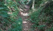 Randonnée Marche LOCMELAR - ballade 270719 - Photo 25