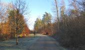 Trail Walk SAINT-JEAN-AUX-BOIS - en forêt de Compiègne_33_12_2019_les Tournantes de l'étang Saint-Jean et des Prés Saint-Jean - Photo 37