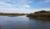 Trail Canoe Kayak TALMONT-SAINT-HILAIRE - le payré  talmont - Photo 1