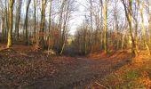 Trail On foot VIEUX-MOULIN - en forêt de Compiègne_23_la Grotte des Ramoneurs_le Mont Berny - Photo 126
