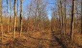 Trail Walk PIERREFONDS - en forêt de Compiègne_24_Tournantes sur le Voliard et sur la Fortelle_chaussée Brunehaut - Photo 15