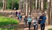 Randonnée Marche VILLETTES - Villettes - Photo 2