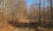 Trail Walk PIERREFONDS - en forêt de Compiègne_24_Tournantes sur le Voliard et sur la Fortelle_chaussée Brunehaut - Photo 135