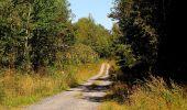 Trail Walk DAMPLEUX - en forêt de Retz_80_sur la Route Tortue et la Route Droite - Photo 270