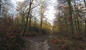 Trail On foot VIEUX-MOULIN - en forêt de Compiègne_23_la Grotte des Ramoneurs_le Mont Berny - Photo 119