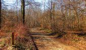 Trail On foot VIEUX-MOULIN - en forêt de Compiègne_23_la Grotte des Ramoneurs_le Mont Berny - Photo 83