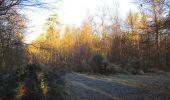 Trail Walk SAINT-JEAN-AUX-BOIS - en forêt de Compiègne_33_12_2019_les Tournantes de l'étang Saint-Jean et des Prés Saint-Jean - Photo 127