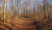 Trail Walk PIERREFONDS - en forêt de Compiègne_24_Tournantes sur le Voliard et sur la Fortelle_chaussée Brunehaut - Photo 33