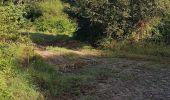 Randonnée Marche LOCMELAR - ballade 270719 - Photo 30