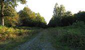 Trail Walk DAMPLEUX - en forêt de Retz_80_sur la Route Tortue et la Route Droite - Photo 52