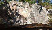 Randonnée Marche FONTAINEBLEAU - Forêt de Fontainebleau tour de Denecourt 21-09-19.ori - Photo 1