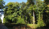 Trail Walk DAMPLEUX - en forêt de Retz_80_sur la Route Tortue et la Route Droite - Photo 206