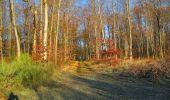 Trail Walk SAINT-JEAN-AUX-BOIS - en forêt de Compiègne_33_12_2019_les Tournantes de l'étang Saint-Jean et des Prés Saint-Jean - Photo 95