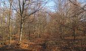 Trail Walk PIERREFONDS - en forêt de Compiègne_24_Tournantes sur le Voliard et sur la Fortelle_chaussée Brunehaut - Photo 120