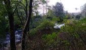 Randonnée Marche SENTHEIM - Bucherg - Photo 19