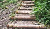 Randonnée Marche MUHLBACH-SUR-BRUCHE - Le Jardin des Fées par la cascade de Soulzbach - Photo 35