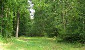 Randonnée Marche LONGPONT - en foret de Retz_ 41_Longpont_Vertes Feuilles_AR - Photo 148