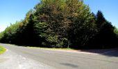 Trail Walk DAMPLEUX - en forêt de Retz_80_sur la Route Tortue et la Route Droite - Photo 286